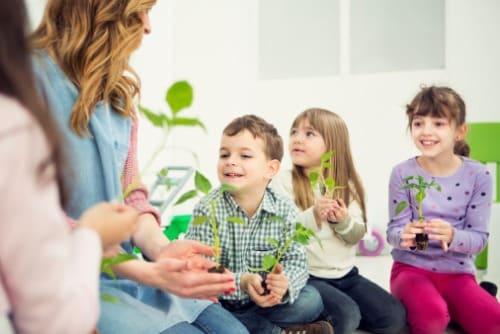 growing-plants-in-classroom